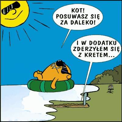 k_pk019c
