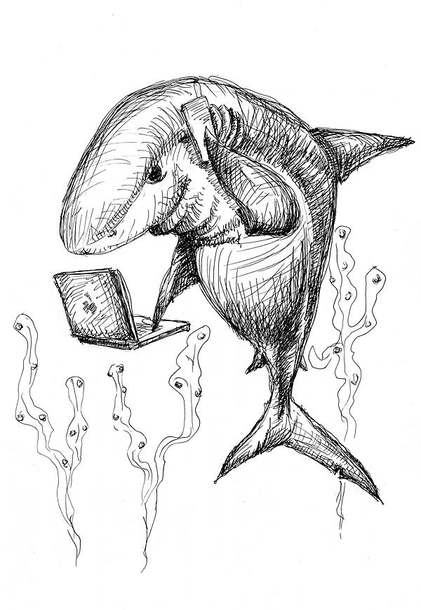 str 12 rekin biznesu s